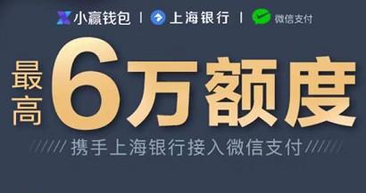 上海小赢信用卡无需面签,最高可获6万额度